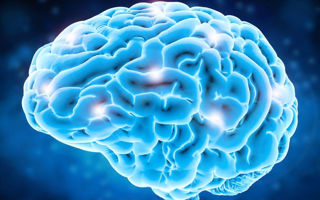 Inganna il tuo cervello